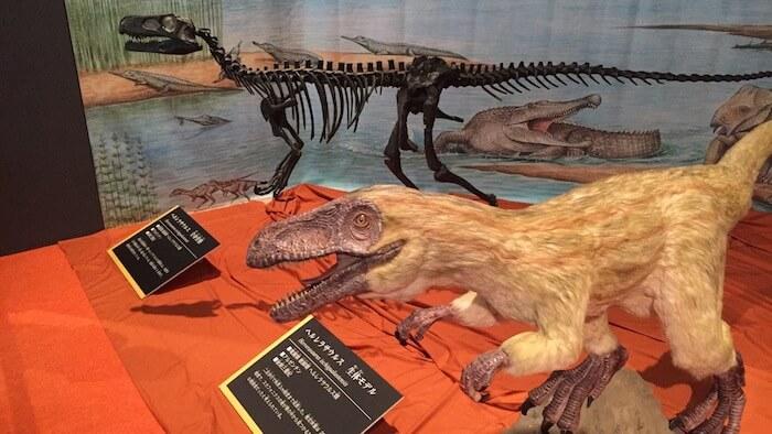 ヘルレラサウルス